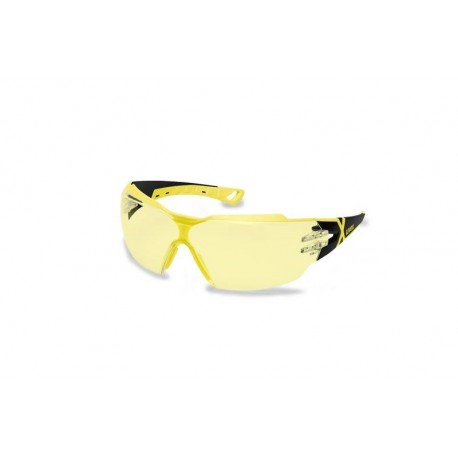 Ochelari de protectie Pheos CX2