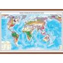 Harta zonelor de soluri pe glob