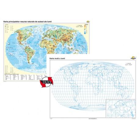 Harta principalelor resurse naturale de subsol ale lumii – Duo 160x120 cm